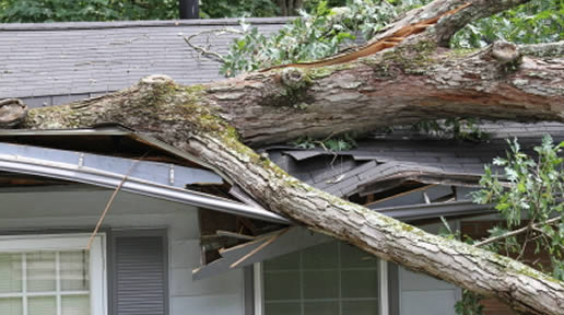 Florida Tornado & Wind Damage Insurance Claim Adjusters