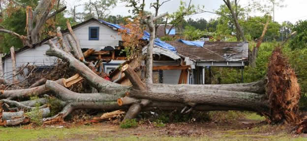 Hurricane Sandy Insurance Claims Adjuster